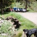 North Fork of the Big Wood Trailhead parking lot.- North Fork of the Big Wood - West Pass