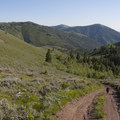 Looking down the jeep road that drops into Indian Creek.- Driveway Gulch Hike
