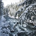 Rogue River just below Rogue Gorge in winter.- Rogue Gorge