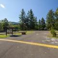 Alder Lake Park's Elk Plain Campground- Alder Lake Park