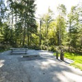 Typical campsite in Alder Park Main Campground West.- Alder Lake Park Campground
