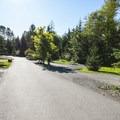 Alder Park Main Campground West.- Alder Lake Park Campground