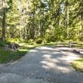 Typical campsite at Alder Park Main Campground East.- Alder Lake Park Campground