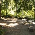 Walk-in campsite at Alder Park Osprey Campground.- Alder Lake Park Campground