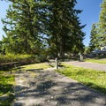 Alder Lake Elk Plain Campground.- Alder Lake Park Campground