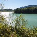 View of Alder Lake Reservoir from Alder Lake Elk Plain Campground.- Alder Lake Park Campground