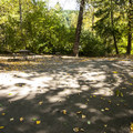 Typical campsite at Rocky Point Campground.- Alder Lake, Rocky Point Campground