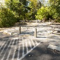 Day use picnic area at Rocky Point Campground.- Alder Lake, Rocky Point Campground