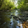 Big Creek at Big Creek Campground.- Big Creek Campground