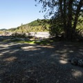 Nisqually River campsite.- Nisqually River Campsite