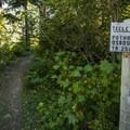 Teeley Creek Trailhead.- Granite, Bertha May + Pothole Lakes