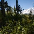 Early views of Mount Rainier (14,411').- Granite, Bertha May + Pothole Lakes