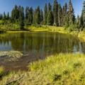 Tipsoo Lake.- Tipsoo Lake