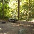 Typical campsite at Silver Springs Campground.- Silver Springs Campground