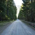 Gravel road on the west side of Ranger Creek Airstrip.- Buck Creek Campsites at Ranger Creek Airstrip