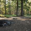 Dispersed campsite on the west side of Ranger Creek Airstrip.- Buck Creek Campsites at Ranger Creek Airstrip