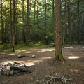 Typical campsite on a loop off of NF-7160.- Buck Creek Campsites at Ranger Creek Airstrip