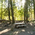Typical campsite at The Dalles Campground.- The Dalles Campground