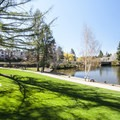 Pioneer Park and the Deschutes River's Mirror Pond.- Pioneer Park
