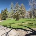 Pioneer Park.- Pioneer Park