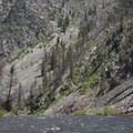 Fire scars and thinning timber mark a change in the landscape above Powerhouse Rapid.- Middle Fork of the Salmon River - Day 1