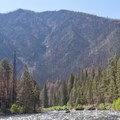 Looking at the severly burned face on river right above Sheepeater Camp.- Middle Fork of the Salmon River - Day 1