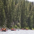 A covey of commercial rafts float alongside the heavily forested upper canyon.- Middle Fork of the Salmon River - Day 1