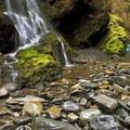 Quinault River at Pony Bridge.- Enchanted Valley Trail to Pony Bridge
