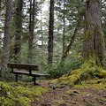 Plenty of benches along the trail offer a chance to sit and enjoy the peaceful surroundings.- Mike Miller Park