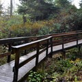 Bridges and walkways are common along the loop.- Mike Miller Park