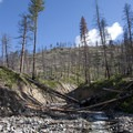 Looking up Lake Creek after one of the larger debris flow events.- Middle Fork of the Salmon River - Day 2