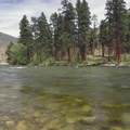 A beautiful grove of ponderosa pines flanks the river at Stateland Right Camp.- Middle Fork of the Salmon River - Day 3