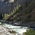 Scouting Weber Rapid.- Middle Fork of the Salmon River - Day 5