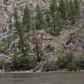Otter Bar Camp innundated by high water at 7.5 feet.- Middle Fork of the Salmon River - Day 6