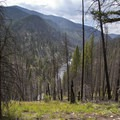 For the first several miles the trail stays well above the river, and there are only fleeting glimpses of the canyon below.- Middle Fork of the Salmon River Trail – Day 1