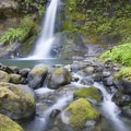 Flora Dell Falls is right along the trail.- Rogue River: Grave Creek to Foster Bar