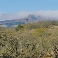 Fog over the hills.- Rockville Hills Regional Park