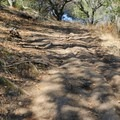 Sections of the climb to the ridge are quite steep.- Rockville Hills Regional Park