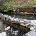 The hot springs up Loon Creek are a 0.9-mile walk from camp.- Middle Fork of the Salmon River Trail – Day 4