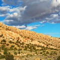 The hike begins in the desert lands of House Rock Valley and gradually ascends into lush forest.- Saddle Mountain Trail