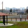 Off-leash dog park and view of the Sacramento skyline.- Sutter's Landing Regional Park