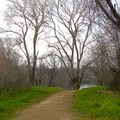 Heading down the trail to the American River.- Sutter's Landing Regional Park