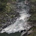 Close-up of Windy Creek Chute.- Rogue River Trail - Day 1