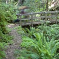 Crossing a beautiful bridge over one of the Rogue's many tributaries.- Rogue River Trail – Day 4