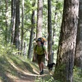 Crusing through dense old-growth forest.- Rogue River Trail – Day 4