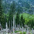 A profusion of cascades pours into the basin.- Heather Lake