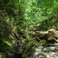 The small creek is barely discernable in the summer months.- Explorer Falls