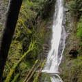 Explorer Falls is a classic horsetail falls measuring approximately 50 feet.- Explorer Falls