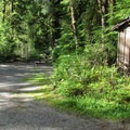 Vault toilets, picnic tables, and fire pits are the only ammenities at Esswine.- Esswine Group Campground