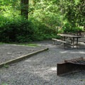 The designated sites are ideally situated for a large group.- Esswine Group Campground